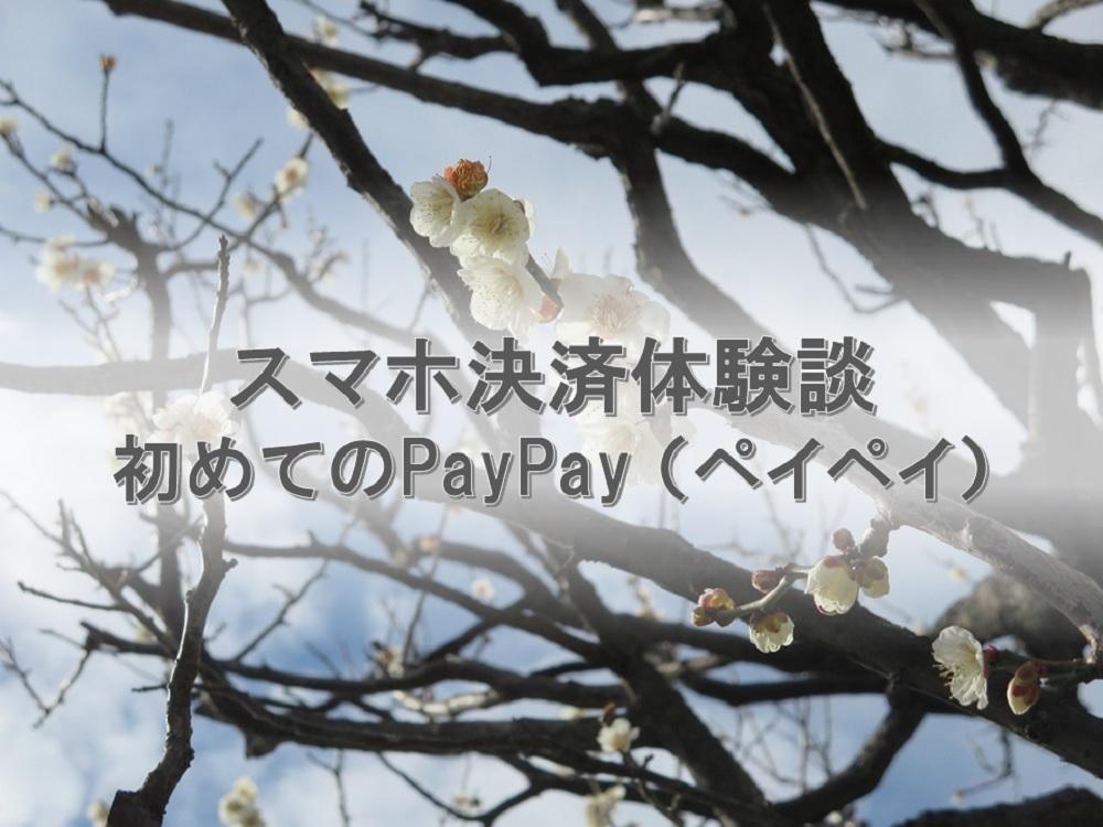 スマホ決済体験談PayPay(ペイペイ)