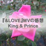 キンプリの&LOVEのMVの感想