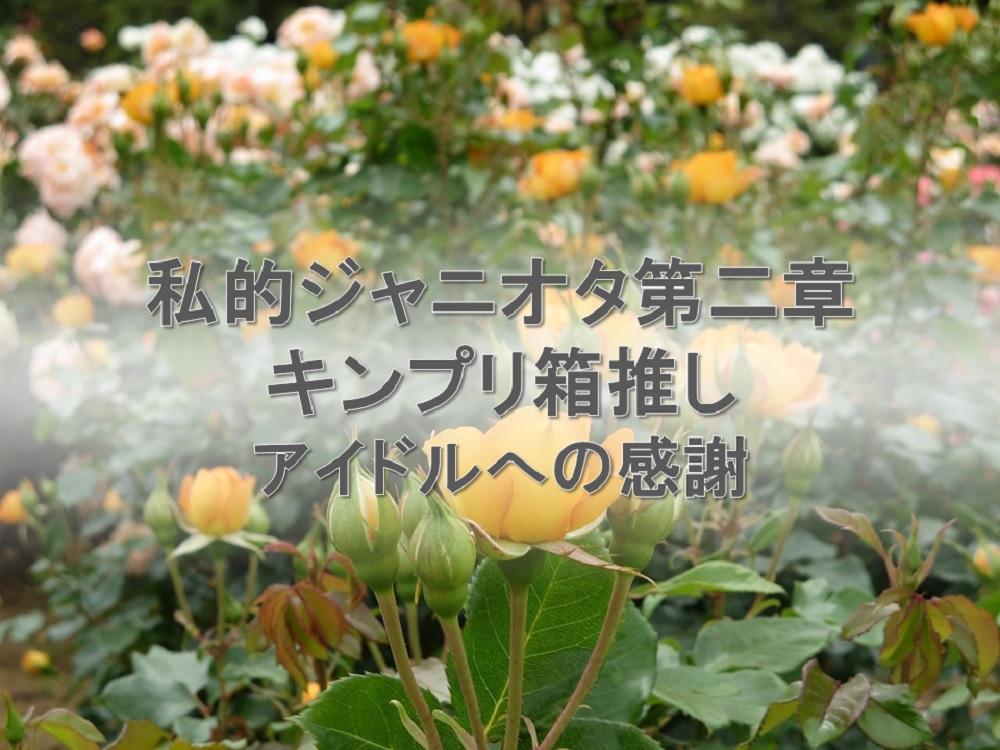 私的ジャニオタ第二章キンプリ箱推し。夢中になることの面白さを教えてくれたアイドル平野紫耀さんへ感謝